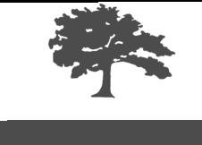 Bremo Trees logo